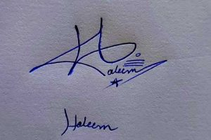 Haleem Name Handwritten Signature